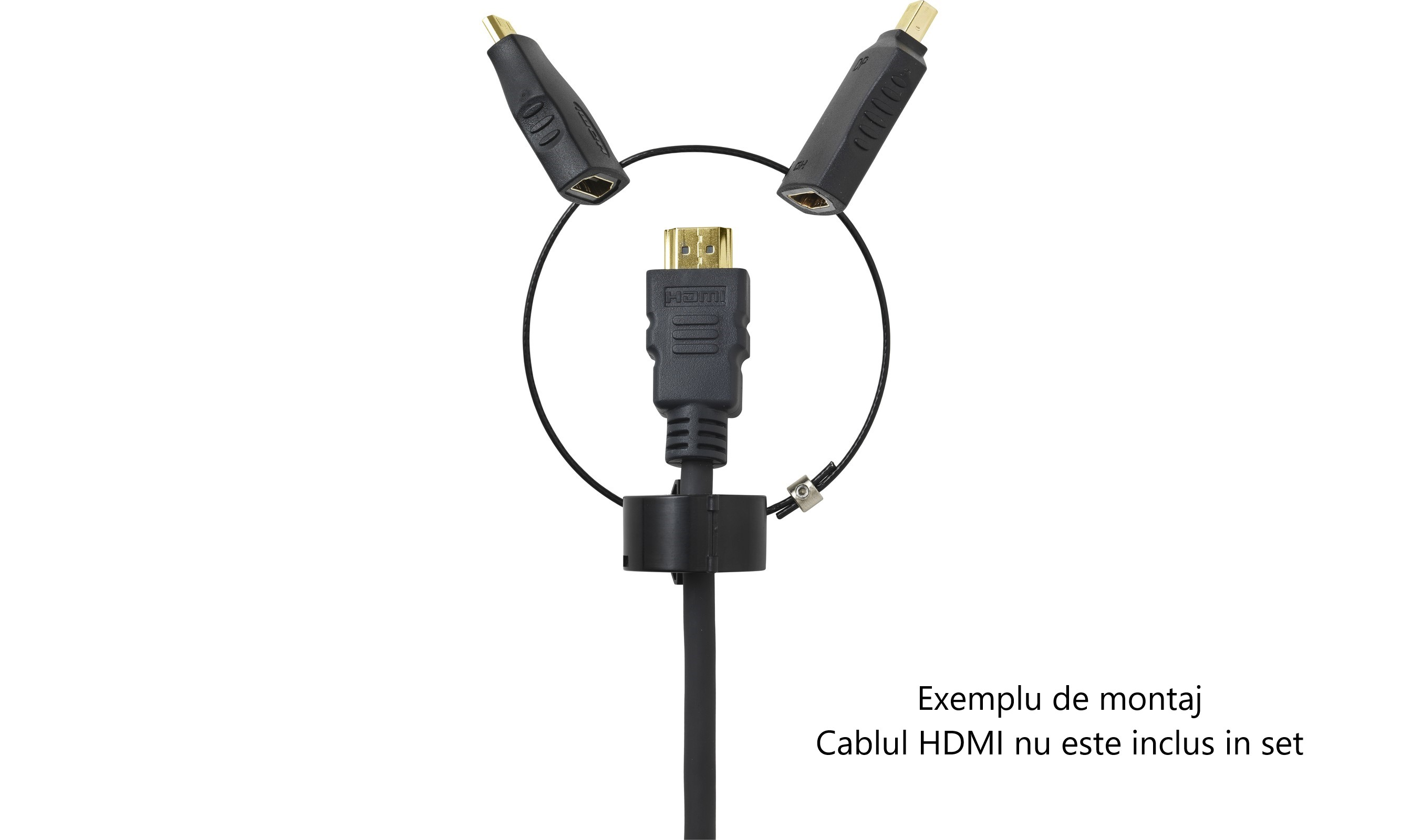Set adaptoare Vivolink PRO HDMI - Mini HDMI si HDMI - Mini DisplayPort